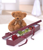 Perfection Teddy Bear Gift Set