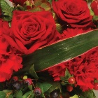Wreath (Leaf Edging) Red and Green